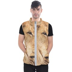 Big Male Lion Looking Right Men s Puffer Vest