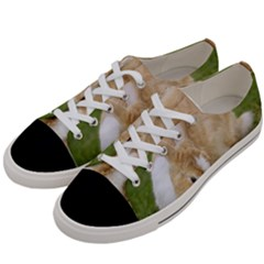 Beautiful Blue Eyed Bunny On Green Grass Women s Low Top Canvas Sneakers by Ucco