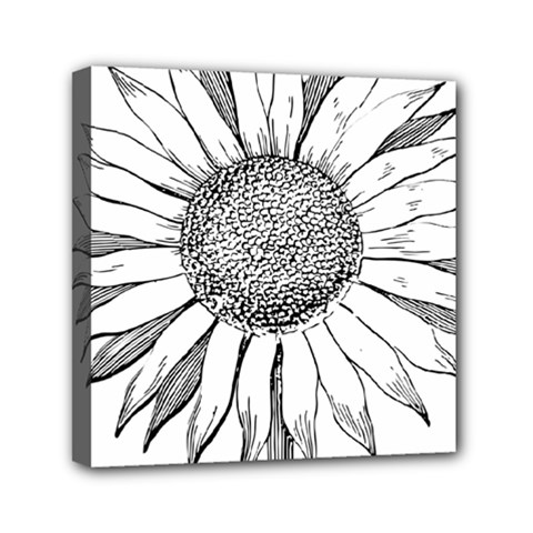 Sunflower Flower Line Art Summer Mini Canvas 6  X 6  by Celenk