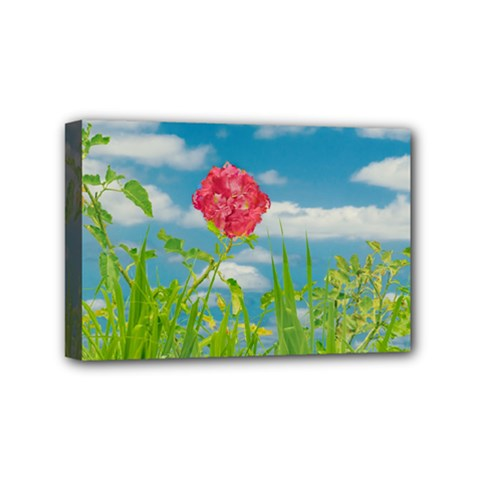 Beauty Nature Scene Photo Mini Canvas 6  X 4  by dflcprints