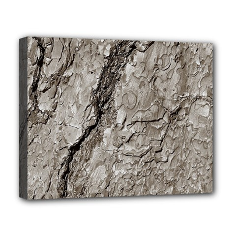 Tree Bark A Deluxe Canvas 20  X 16   by MoreColorsinLife
