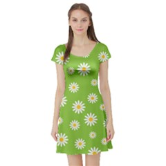 Daisy Flowers Floral Wallpaper Short Sleeve Skater Dress