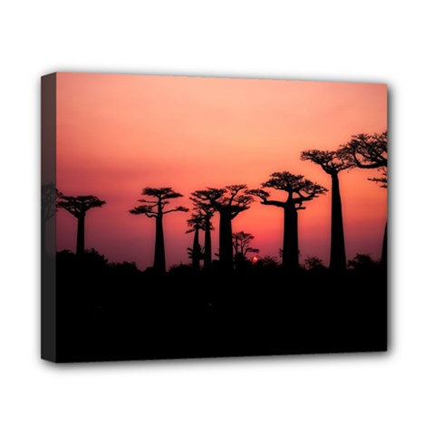 Baobabs Trees Silhouette Landscape Canvas 10  X 8  by BangZart