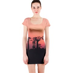 Baobabs Trees Silhouette Landscape Short Sleeve Bodycon Dress