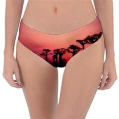 Baobabs Trees Silhouette Landscape Reversible Classic Bikini Bottoms