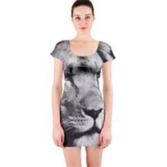 Africa Lion Male Closeup Macro Short Sleeve Bodycon Dress