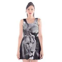 Africa Lion Male Closeup Macro Scoop Neck Skater Dress by BangZart