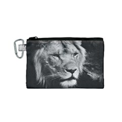 Africa Lion Male Closeup Macro Canvas Cosmetic Bag (small) by BangZart