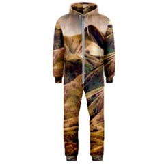 Iceland Mountains Sky Clouds Hooded Jumpsuit (men)