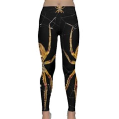 Insect Macro Spider Colombia Classic Yoga Leggings