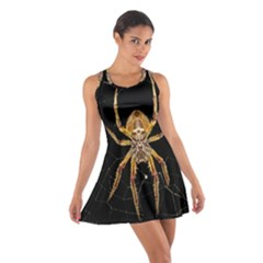 Insect Macro Spider Colombia Cotton Racerback Dress