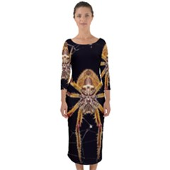 Insect Macro Spider Colombia Quarter Sleeve Midi Bodycon Dress
