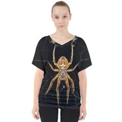 Insect Macro Spider Colombia V Neck Dolman Drape Top