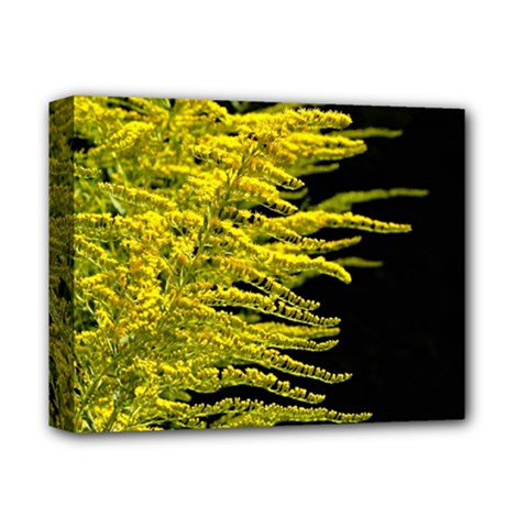 Golden Rod Gold Diamond Deluxe Canvas 14  X 11  by BangZart