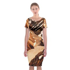Iceland Mountains Snow Ravine Classic Short Sleeve Midi Dress