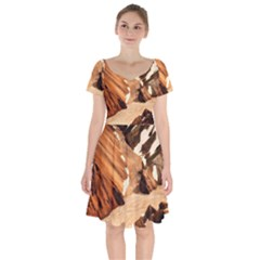 Iceland Mountains Snow Ravine Short Sleeve Bardot Dress