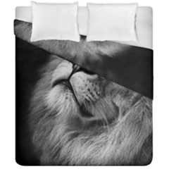 Feline Lion Tawny African Zoo Duvet Cover Double Side (california King Size)