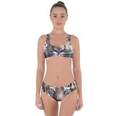Tiger Bengal Stripes Eyes Close Criss Cross Bikini Set