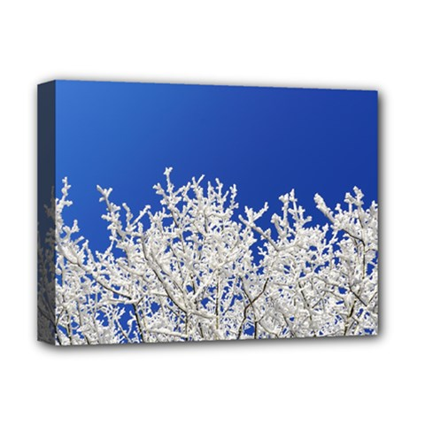 Crown Aesthetic Branches Hoarfrost Deluxe Canvas 16  X 12