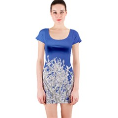Crown Aesthetic Branches Hoarfrost Short Sleeve Bodycon Dress