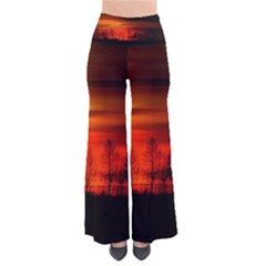 Tree Series Sun Orange Sunset Pants