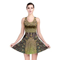 Peacock Feathers Wheel Plumage Reversible Skater Dress