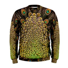 Peacock Feathers Wheel Plumage Men s Sweatshirt