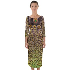 Peacock Feathers Wheel Plumage Quarter Sleeve Midi Bodycon Dress