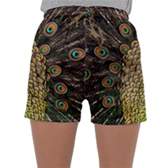 Peacock Feathers Wheel Plumage Sleepwear Shorts
