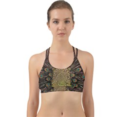 Peacock Feathers Wheel Plumage Back Web Sports Bra by BangZart
