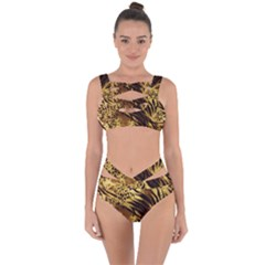 Pattern Tiger Stripes Print Animal Bandaged Up Bikini Set