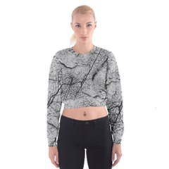 Abstract Background Texture Grey Cropped Sweatshirt