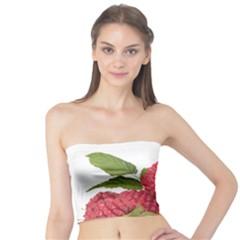 Fruit Healthy Vitamin Vegan Tube Top