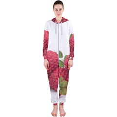 Fruit Healthy Vitamin Vegan Hooded Jumpsuit (ladies)