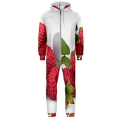 Fruit Healthy Vitamin Vegan Hooded Jumpsuit (men)