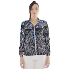 Feather Bird Bird Feather Nature Wind Breaker (women)