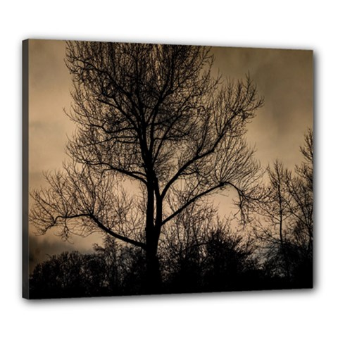 Tree Bushes Black Nature Landscape Canvas 24  X 20
