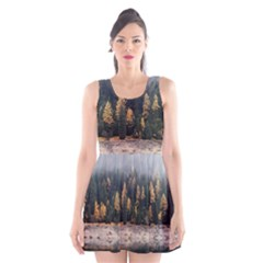 Trees Plants Nature Forests Lake Scoop Neck Skater Dress