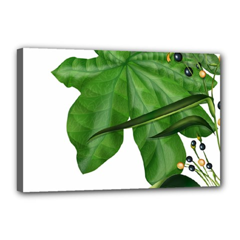 Plant Berry Leaves Green Flower Canvas 18  X 12