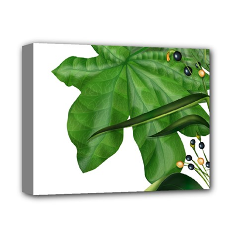 Plant Berry Leaves Green Flower Deluxe Canvas 14  X 11  by BangZart
