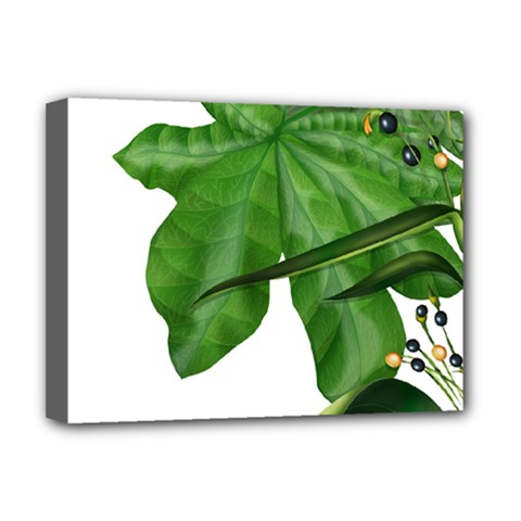 Plant Berry Leaves Green Flower Deluxe Canvas 16  X 12