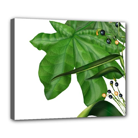 Plant Berry Leaves Green Flower Deluxe Canvas 24  X 20