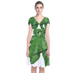 Plant Berry Leaves Green Flower Short Sleeve Front Wrap Dress