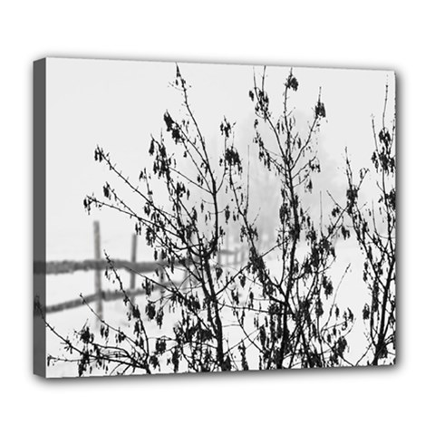 Snow Winter Cold Landscape Fence Deluxe Canvas 24  X 20   by BangZart
