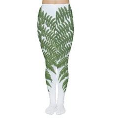 Boating Nature Green Autumn Women s Tights