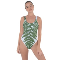 Boating Nature Green Autumn Bring Sexy Back Swimsuit by BangZart
