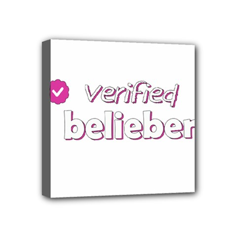 Verified Belieber Mini Canvas 4  X 4  by Valentinaart
