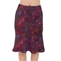 Abstract Fantasy Color Colorful Mermaid Skirt