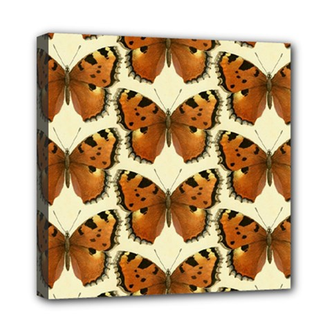 Butterfly Butterflies Insects Mini Canvas 8  X 8  by Celenk