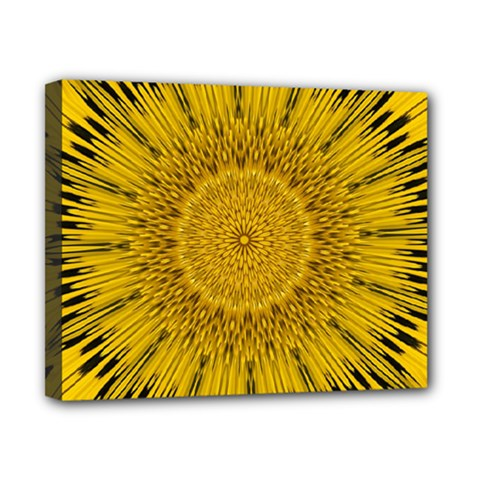 Pattern Petals Pipes Plants Canvas 10  X 8  by Celenk